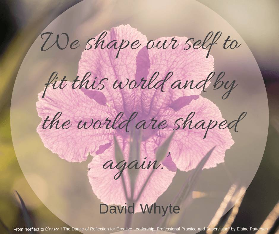 Quotes From Reflect To Create 2019-02-25