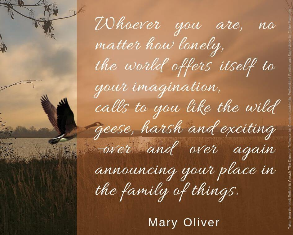 Mary Olive quote over a goose in flight